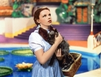 Word.Mojo.Oz.Dorothy.2
